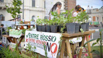 ambientalistas exigen un nuevo modelo productivo