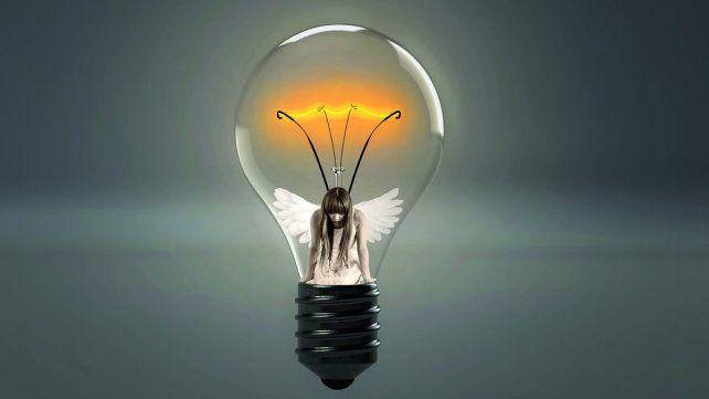 De mosca enmarañada a rara luciérnaga iluminada