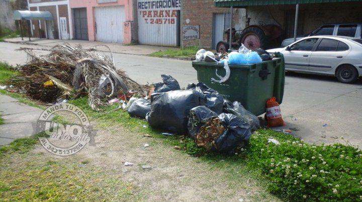 Basura y ratas en calle Jordana