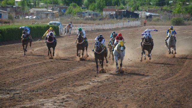 Tras ganar una carrera, murió un caballo en el hipódromo de Neuquén