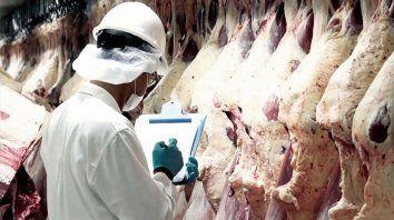 exportar carne esta de lo mejor