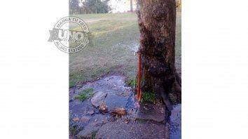 Derroche de agua a metros del monumento a Urquiza