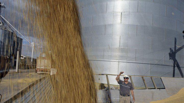 Hoy el cultivo es solo de soja