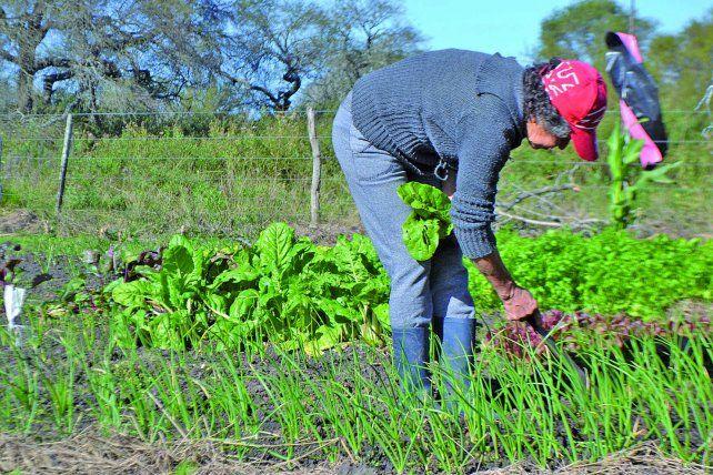 Mujeres rurales luchan por su porvenir y abrazan la esperanza