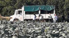 horticultores venden su produccion en buenos aires