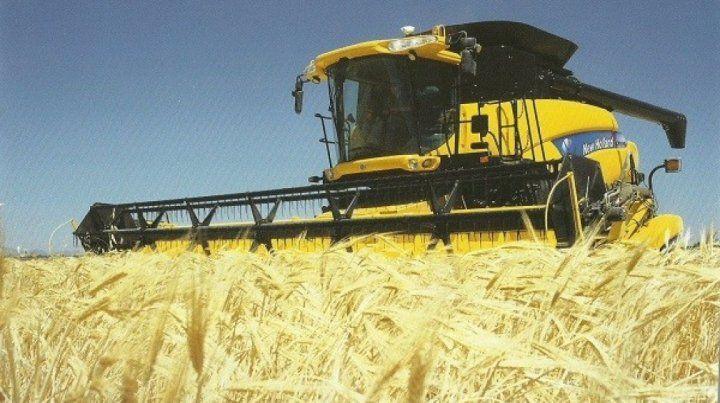 Empezó a paso lento la trilla de trigo en los campos agrícolas de Entre Ríos