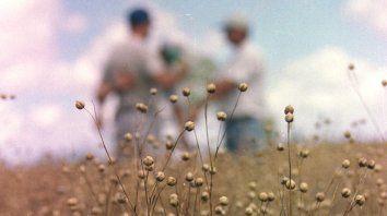 En tres décadas se perdieron cerca de 13.000 explotaciones agropecuarias