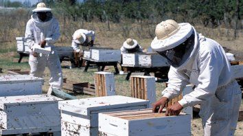empresas entrerrianas habilitadas para exportar miel a china