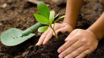 tecnicatura universitaria en jardineria