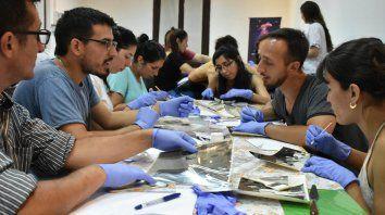 capacitacion en conservacion y preservacion de materiales de museos