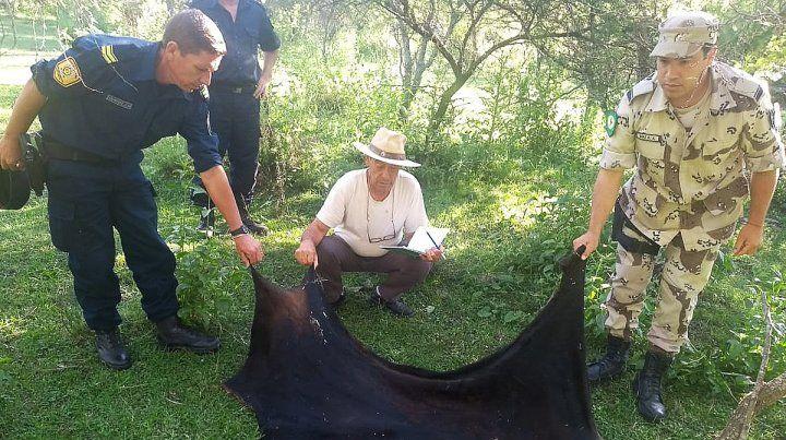 Detuvieron a un policía y a su hermano por carnear ajeno