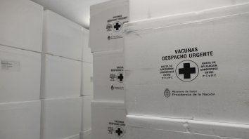 repondran stock de vacunas contra fiebre amarilla y sarampion
