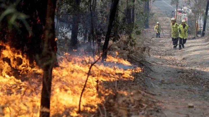 La devastación de los incendios en Australia, en números e imágenes