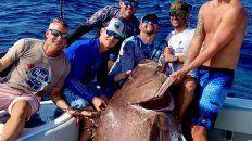 pescaron un pez de casi 160 kilos y resulto ser especie amenazada
