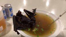 la sopa de murcielago a la que relacionan con el brote de coronavirus