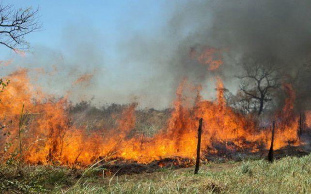 Prevenidos. El fuego está bajo control pero persiste el peligro en la zona de islas y hay humo en la ruta