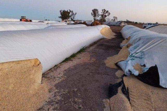 El proyecto de Sergio Massa hace foco en los hechos de vandalismo en distintas provincias, entre ellas Entre Ríos, que han terminado con silobolsas destruidas.
