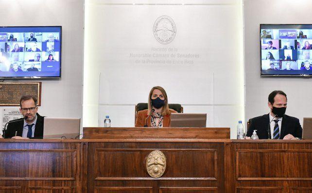 Stratta defendió la probación de la ley de emergencia.