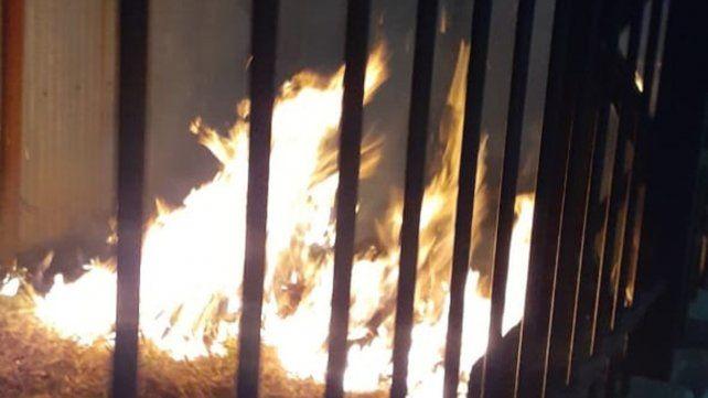 Paraná: hubo un incendio detrás del galpón del GIA